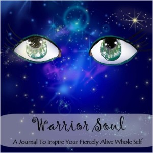 Warrior Soul book cover